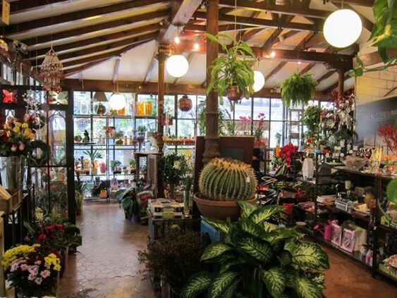Diseño interior de tienda