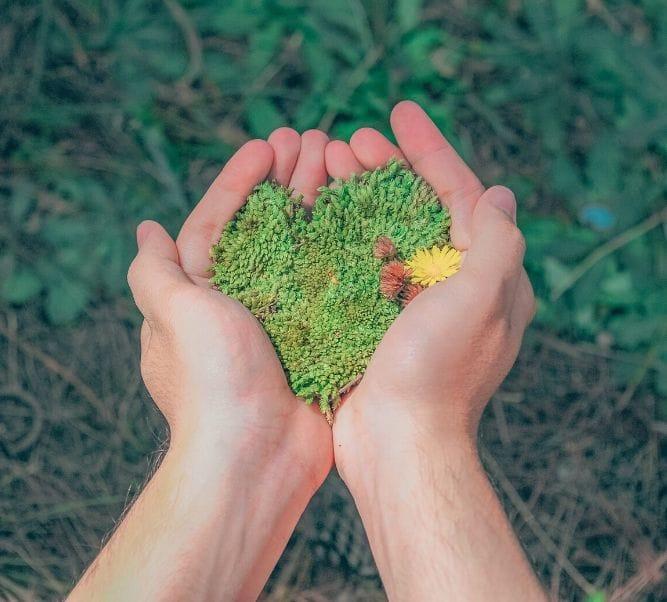 Marcas sostenibles con el medio ambiente
