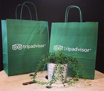 bolsas ecológicas verdes