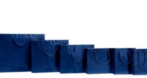 bolsas plastificadas azules