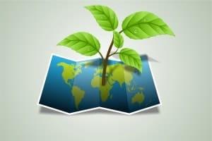 el papel y la sostenibilidad