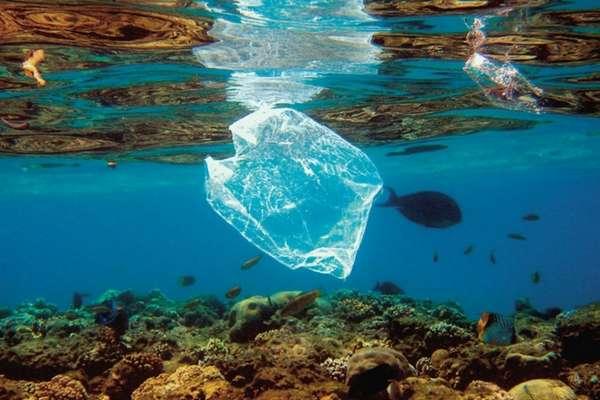 prohibicion del plastico