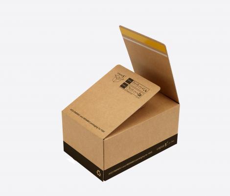 Cajas con cierre autoadhesivo 21x15x12